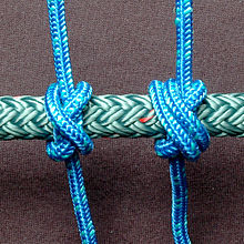 Constrictor-Knot