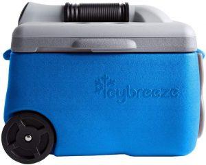 IcyBreeze
