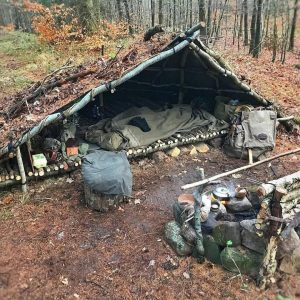 forest camping survival
