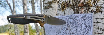 pocket-knife-on-split-tree-branch